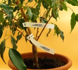 "Бирка для растений ""петелька"" 17x190/ 2.5 тысячи (вт41). Фото Бирка для растений ""петелька"" 17x190/ 2.5 тысячи (вт41)"